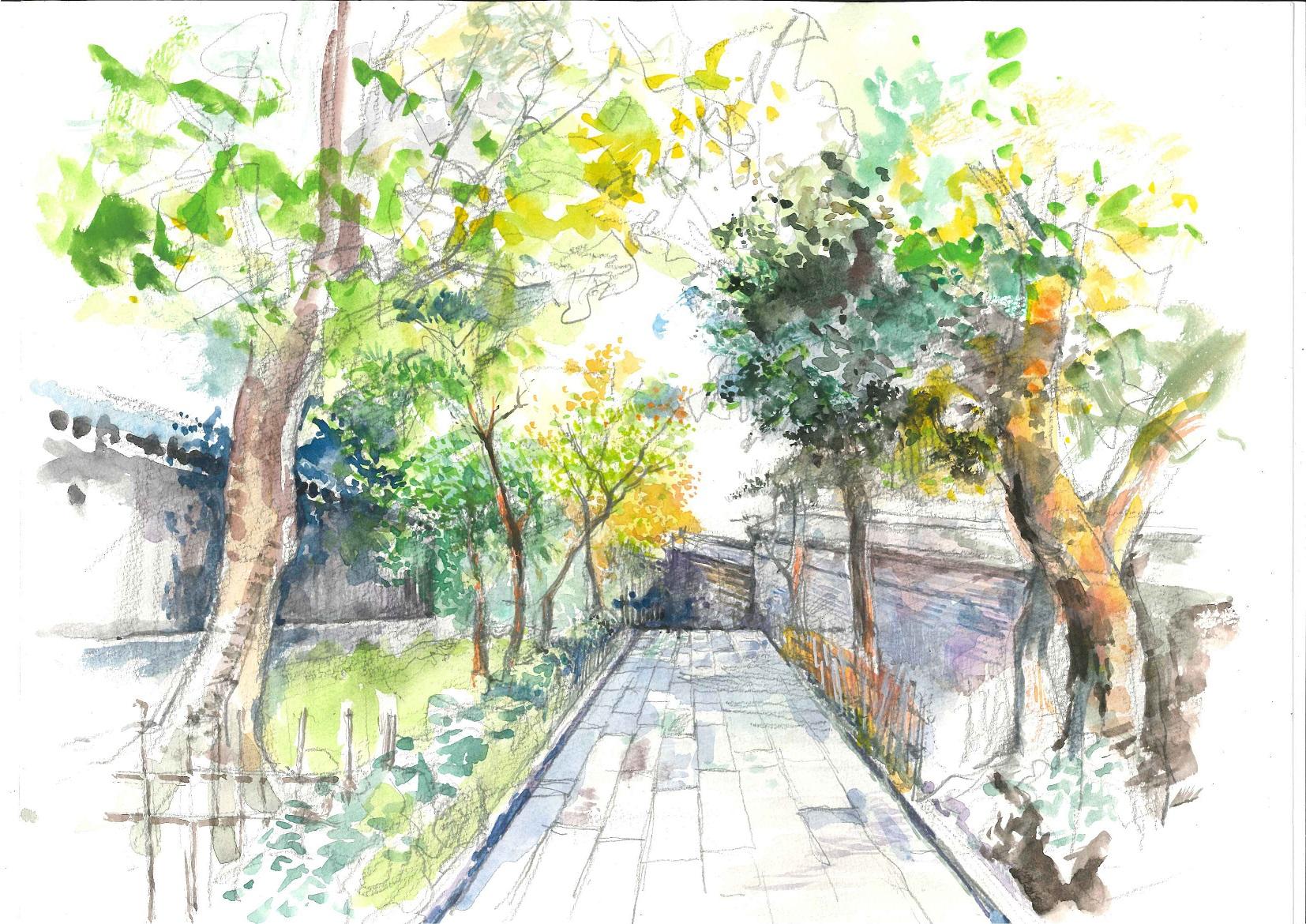 湯島聖堂の道.jpg