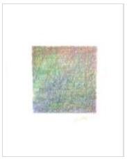 色鉛筆アートプログラム研修会 美しい色面.jpg